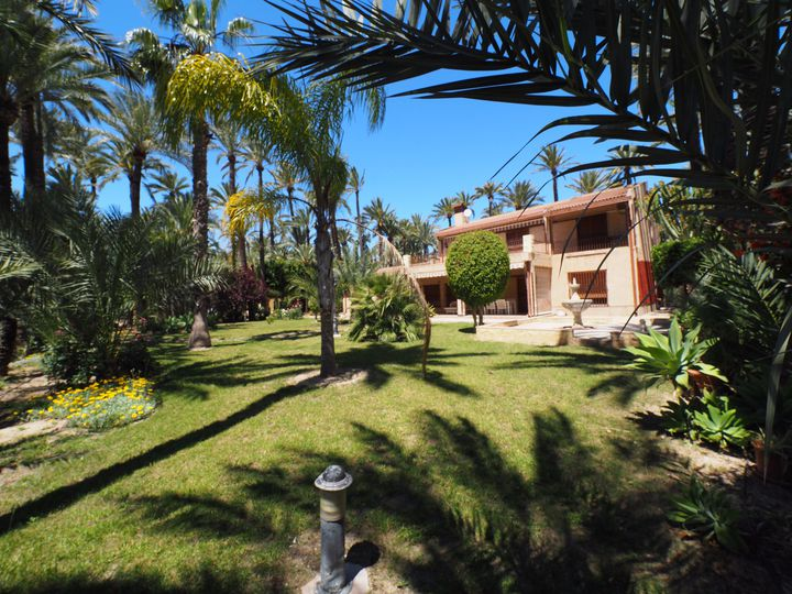 Villa in city Elche