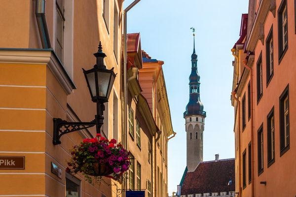 Record Estonia: whether it is decline or growth – they are always the biggest in Europe