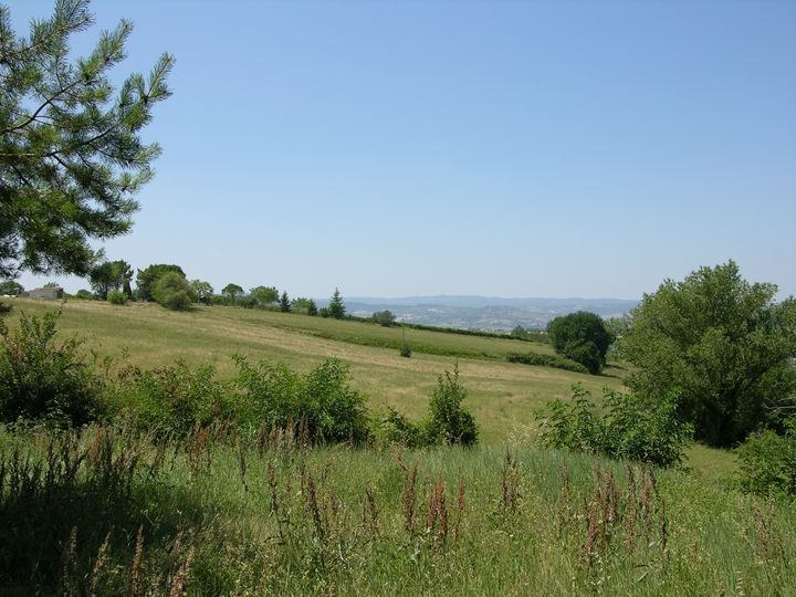 Land in city Todi