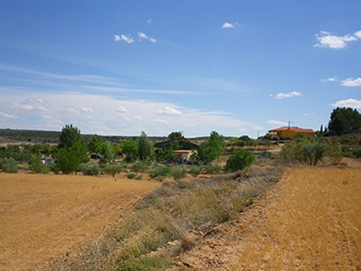 Land in city Almansa