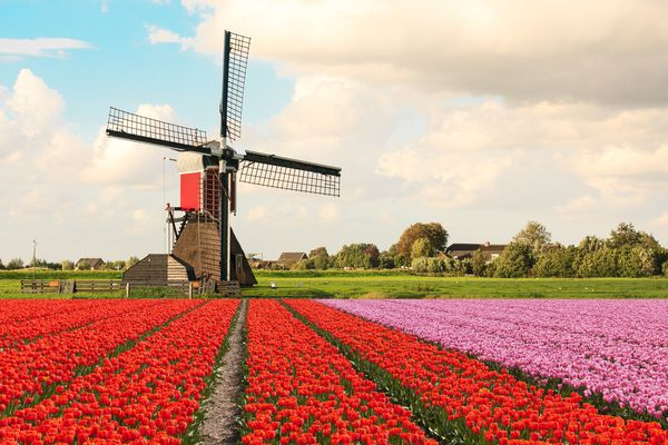 Dutch property rapidly increases in price