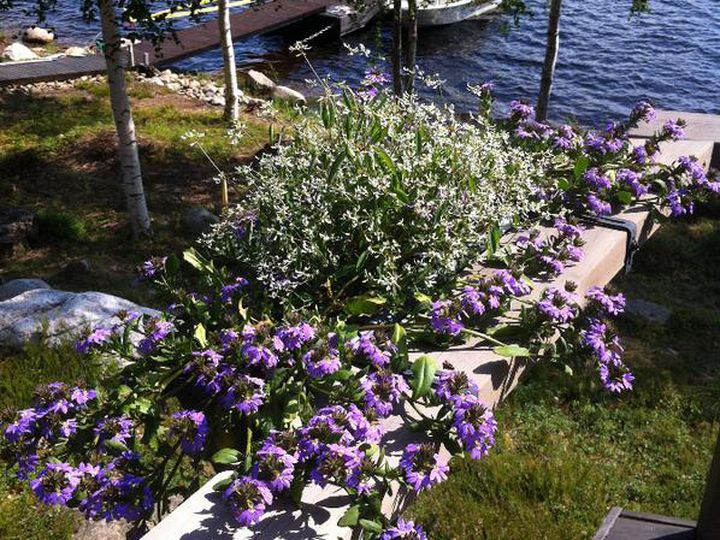 Cottage in city Savonlinna